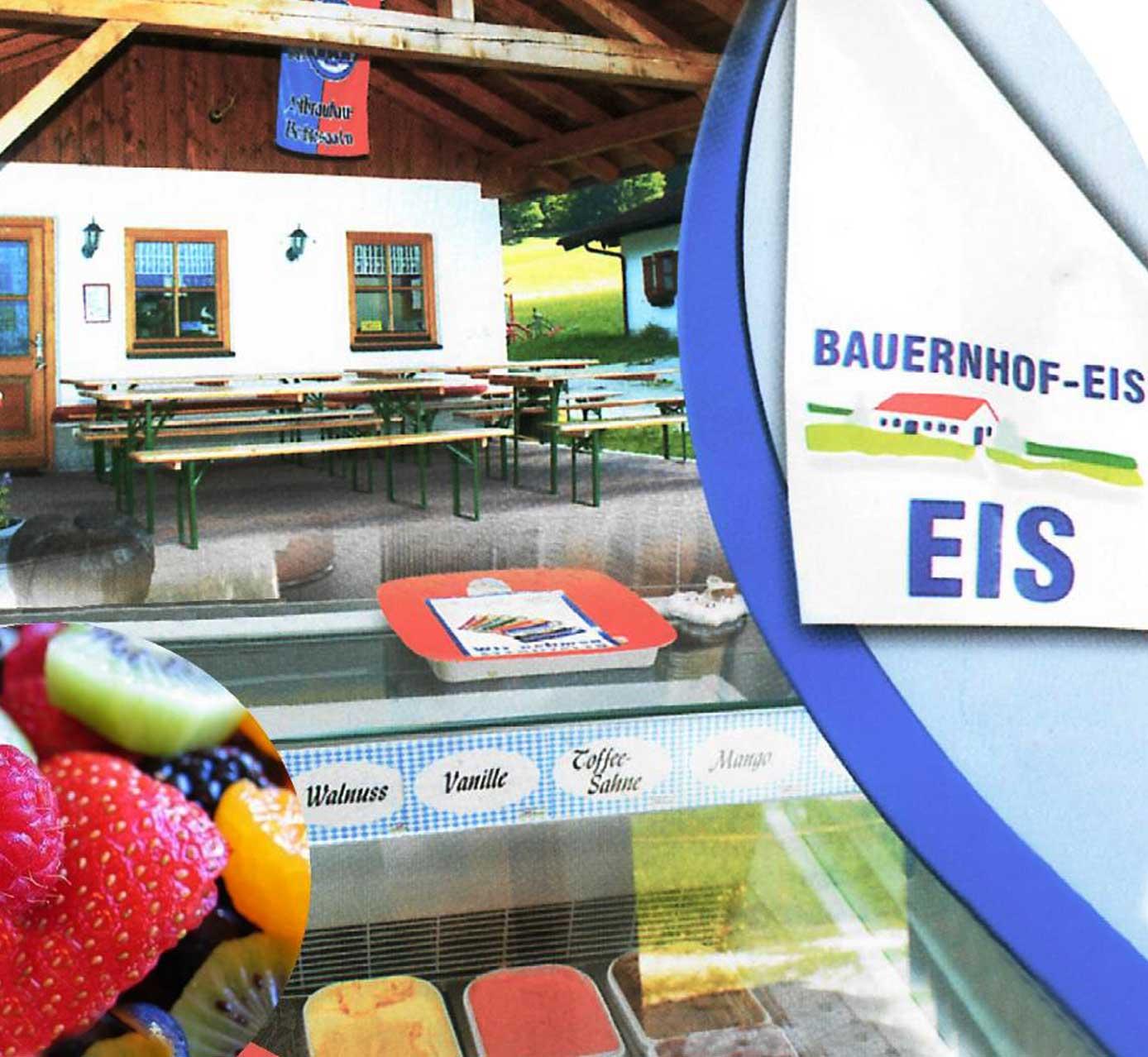 Stoecklhof-Ramsau-Bauernhofeis